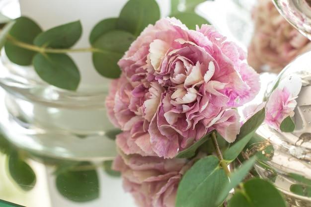 Rosa nelke und babyeukalyptus