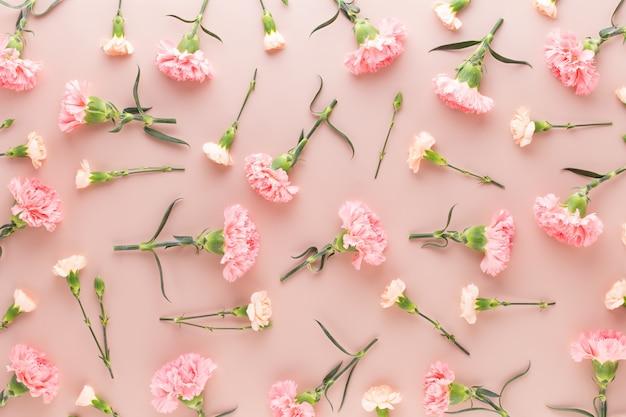 Rosa nelkenblumen auf pastell.