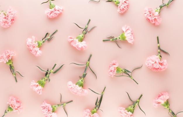 Rosa nelkenblumen auf pastellhintergrund. flache lage, draufsicht, kopierraum.