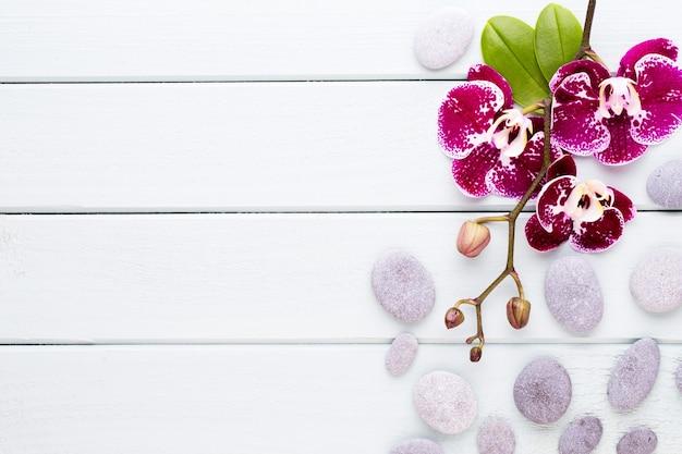 Rosa orchidee auf einem hölzernen hintergrund. spa- und wellnes-szene.