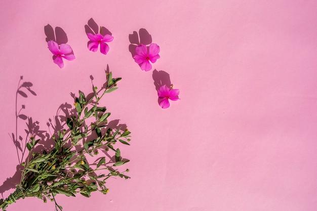 Rosa papier textur hintergrund mit blumen und pflanzen.