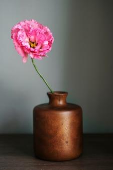 Rosa pfingstrose in einer vase an der wand