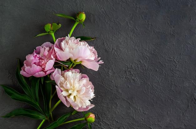 Rosa pfingstrosenblumen auf grauem steinhintergrund. frau tag oder hochzeit hintergrund. valentinstag-konzept