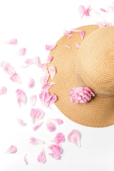 Rosa pfingstrosenblumen und blütenblätter auf weißer draufsicht