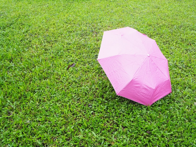 Rosa regenschirm auf grünem wiesengras
