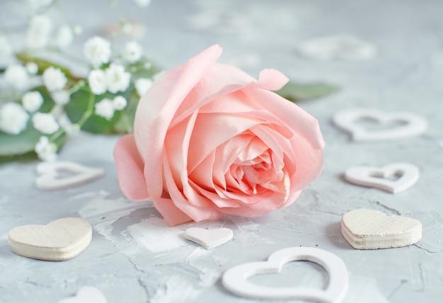 Rosa rose mit herzen auf grauem hintergrund