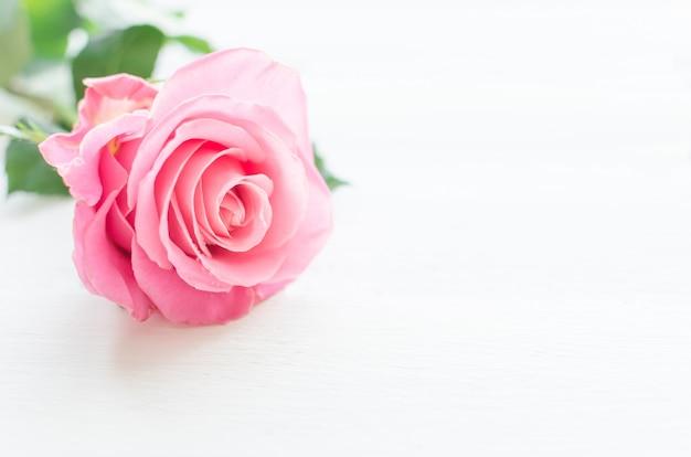 Rosa rose über weißem holzbrett. mutter oder valentinstag