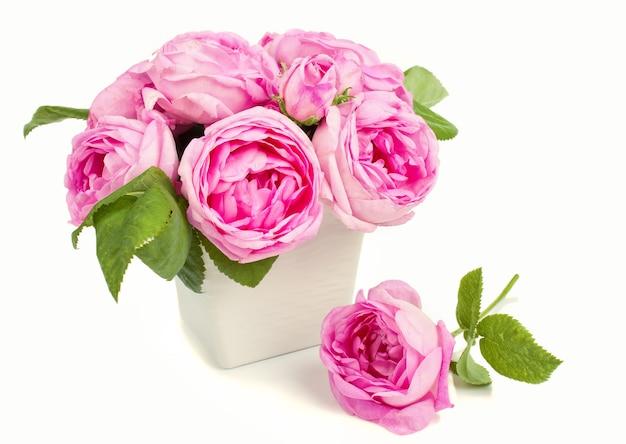 Rosa rosen in der vase und in den blütenblättern lokalisiert auf weißem hintergrund. valentinstag konzept.