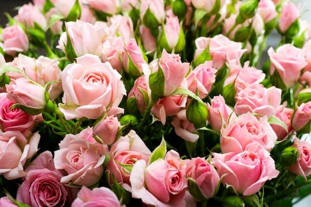 Rosa rosen nahaufnahme, blumenwand. internationaler frauentag