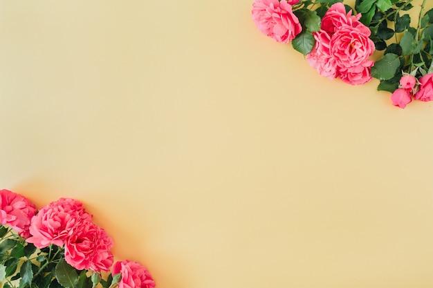 Rosa rosenblumen mit leerem rahmenrahmen des kopierraums auf pastellgelber oberfläche