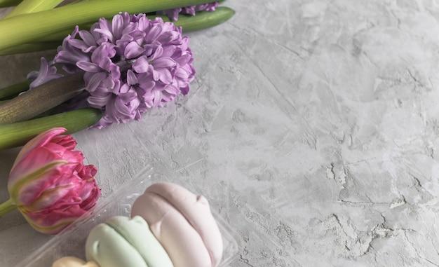 Rosa tulpe und lila hyazinthe mit marshmallows und bändern auf grauem hintergrund
