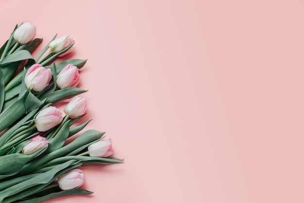 Rosa tulpen auf rosa hintergrund, frauen- und muttertagsgrußkarte