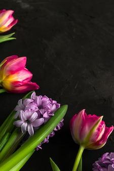 Rosa tulpen und lila hyazinthe liegen roh in der linken ecke der kreidetafel