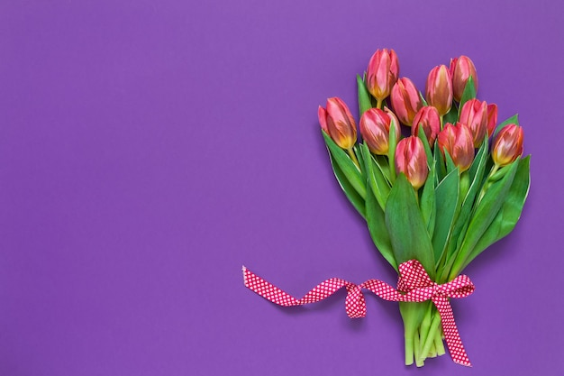 Rosa tulpen verziert mit band auf violettem hintergrund. draufsicht, kopierraum.