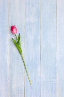 Rosa tulpenblumen auf blauem holztisch. draufsicht mit textfreiraum. flach legen minimaler stil.