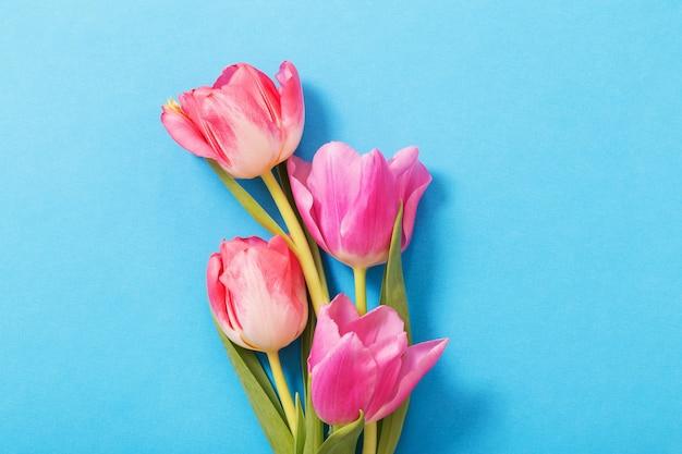 Rosa tulpenhintergrund