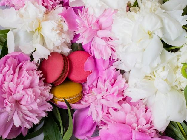 Rosa und gelbe makronen auf pfingstrose. rosa und weiße pfingstrose und makronen.