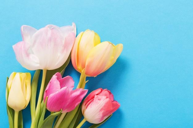 Rosa und gelbe tulpen auf blauem papierhintergrund