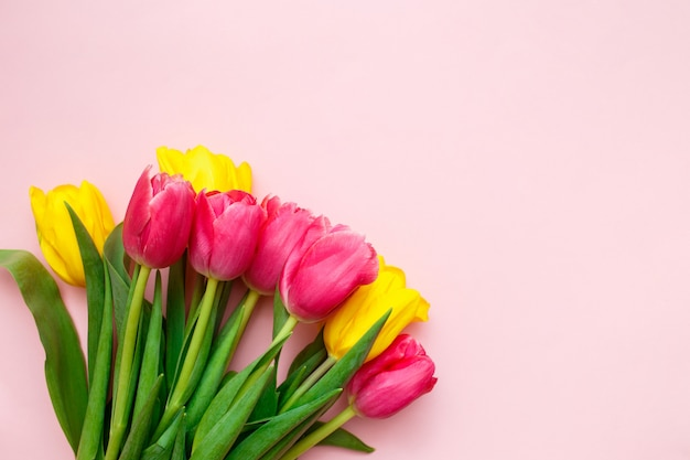 Rosa und gelbe tulpen auf rosa