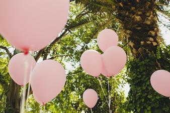 Rosa und weiße Ballons für lustige Veranstaltungen und Feiern
