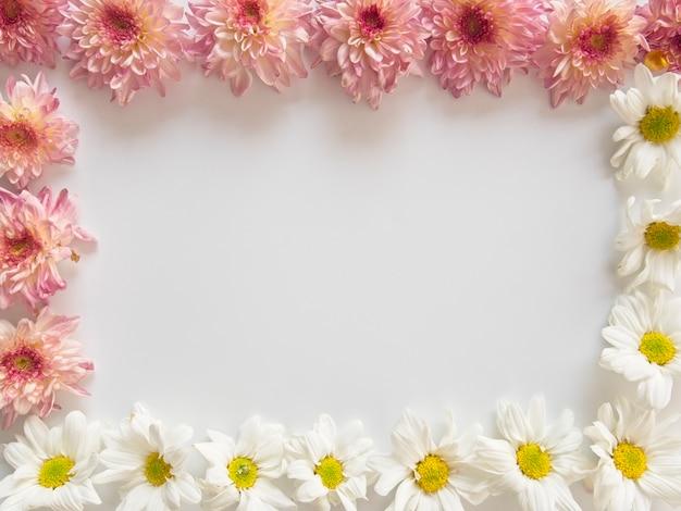 Rosa und weiße blüten, diese werden chrysantheme genannt und um den rahmen herum angeordnet