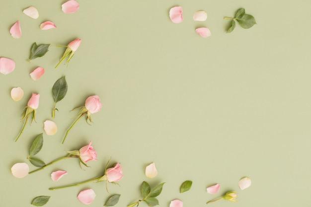 Rosa und weiße blumen auf grüner papieroberfläche