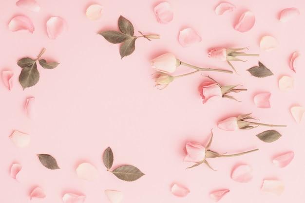 Rosa und weiße blumen auf rosa papieroberfläche
