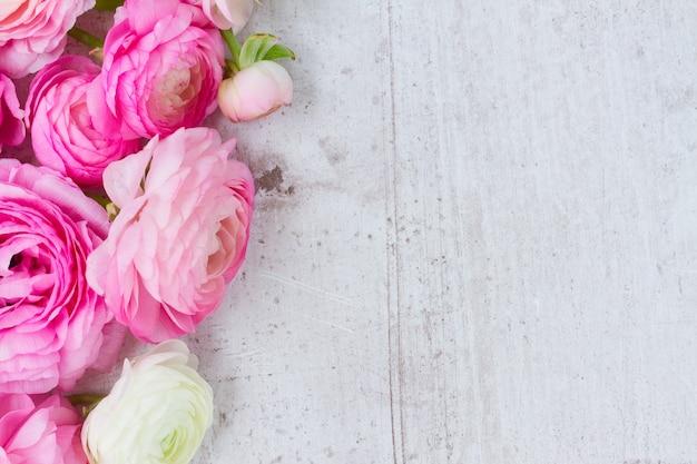 Rosa und weiße ranunkelblumen auf gealtertem weißem hölzernem hintergrund