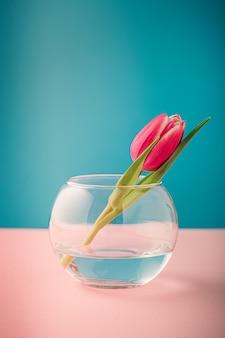 Rosa und weiße tulpen in glasvasen auf der blauen oberfläche. ein geschenk für den frauentag. grußkarte zum muttertag. speicherplatz kopieren