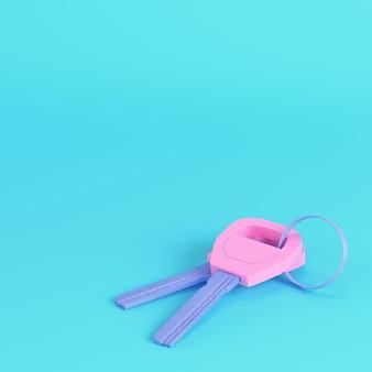Rosa zwei schlüssel am schlüsselbund auf hellblauem hintergrund in pastellfarben. minimalismus-konzept. 3d-rendering