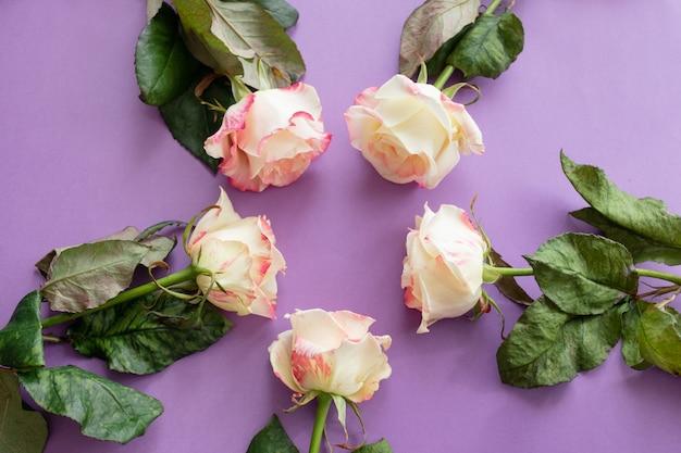 Rosafarbene zusammensetzung der festlichen blumen. draufsicht, flach zu legen