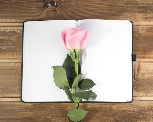 Rosarose auf dem leeren tagebuch über dem hölzernen hintergrund