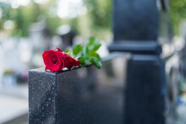 Rose auf grabstein. rote rose auf grab. liebe - verlust. blume auf erinnerungssteinabschluß oben. trag