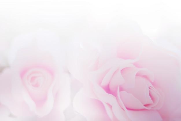 Rose blumen stoff aus papier textur für den hintergrund