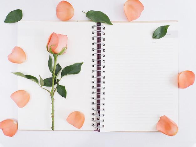 Rose mit grünen blättern auf notizblock