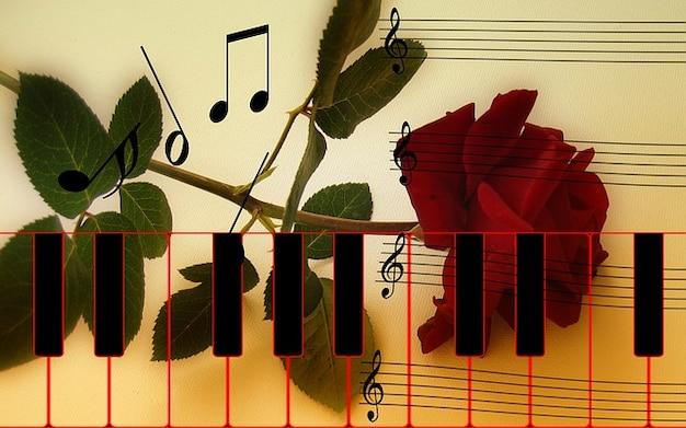 Rose tasten klaviertastatur instrument