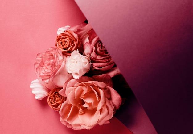 Rosen auf lila farbverlauf isoliert