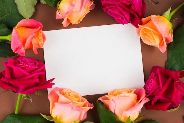 Rosen-blumen, die leeren raum runden