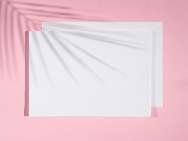 Rosen-hintergrund mit weißen decken und einem ficusschatten