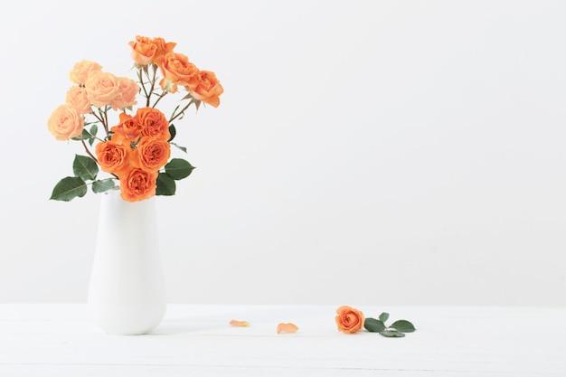 Rosen in der weißen vase auf weißem hintergrund