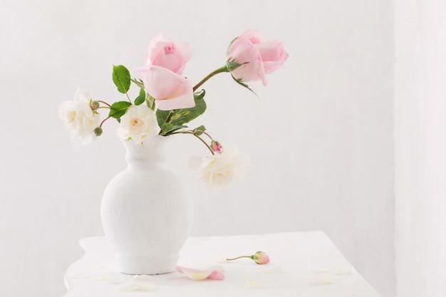 Rosen oin vase auf weißem hintergrund