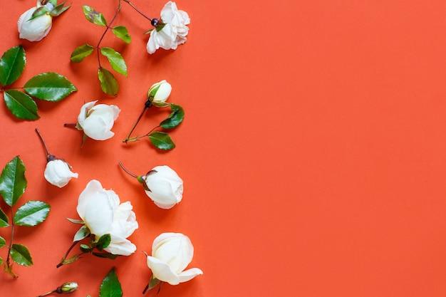 Rosen und blätter auf einer roten hintergrundoberansicht