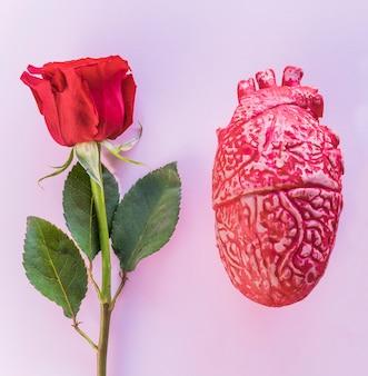 Rosenzweig mit keramischem menschlichem herzen