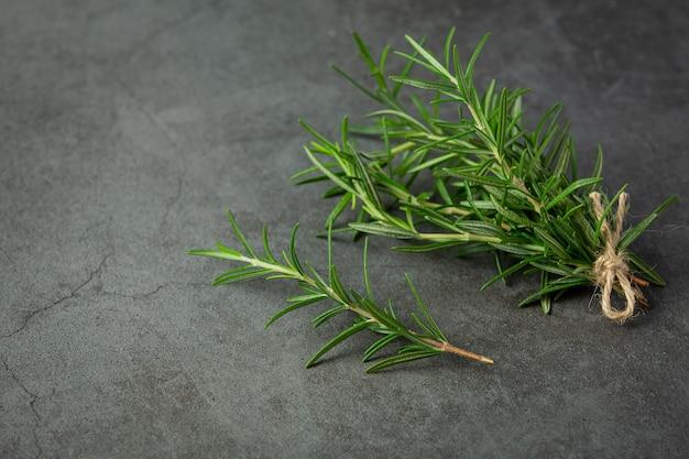 Rosmarinpflanzen auf dunklen boden legen