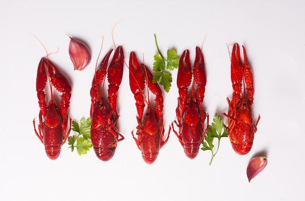 Rot gekochte hummer auf dem weißen raum mit kräutern und knoblauch