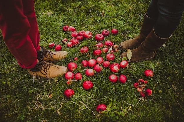 Rote äpfel und beine paare, draufsicht