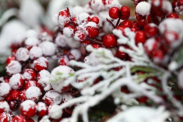 Rote beeren sind im winter mit schnee bedeckt. frohe weihnachten und ein gutes neues jahr konzept.