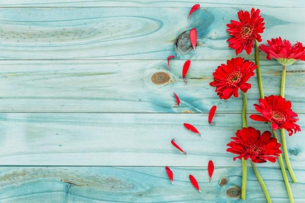 Rote blumen auf blauem hölzernem schreibtisch