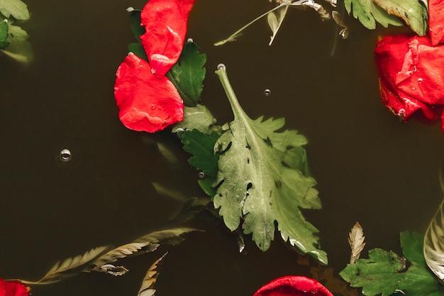 Rote blumenblätter der draufsicht im schwarzwasser