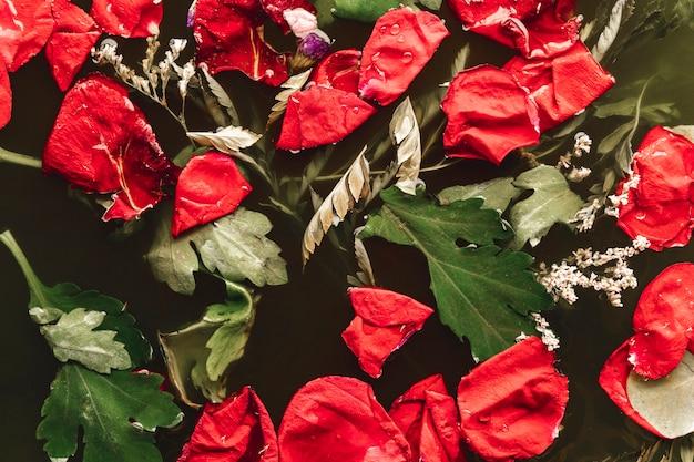 Rote blumenblätter mit blättern im schwarzen wasser